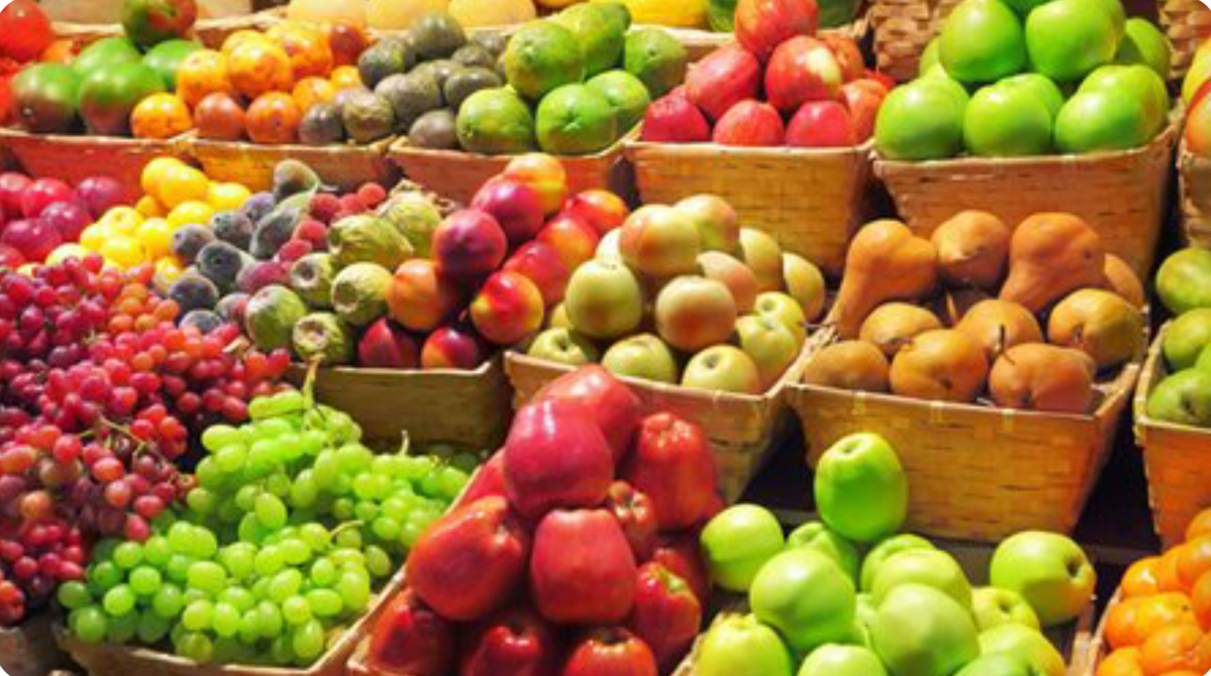 7 tips for organising your processed fruit and vegetables export to Europe