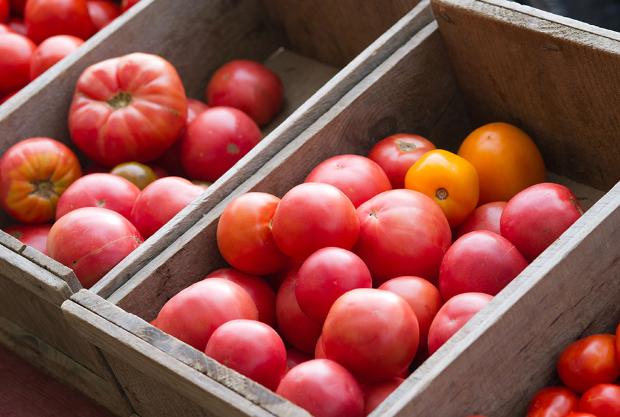 Fruits and Vegetables - Optimal Storage Conditions