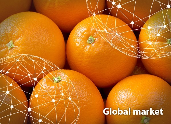 OVERVIEW GLOBAL ORANGE MARKET