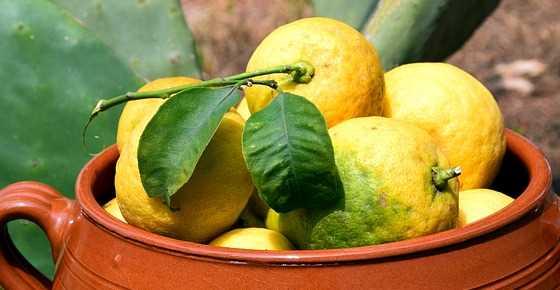 Types of lemon: